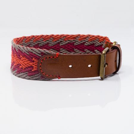 Elbhunde Dresden Buddys Dogwear Peruvian Arrow Orange Halsband