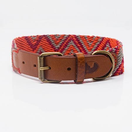 Elbhunde Dresden Buddys Dogwear Peruvian Pikes Orange Halsband Leder