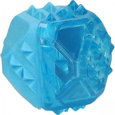 Elbhunde Dresden Coolpets Ice Cube