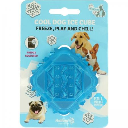 Elbhunde Dresden Coolpets Ice Cube Verpackung