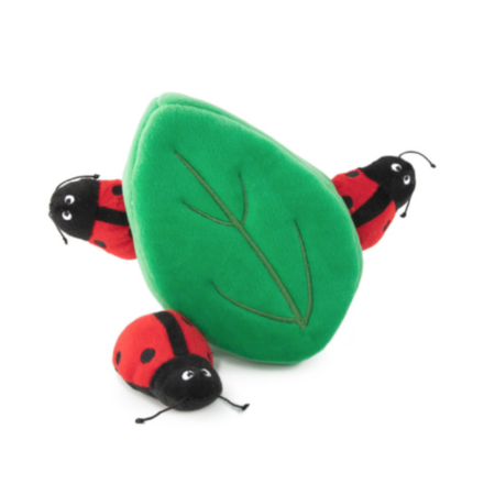 Elbhunde Dresden Zippy Paws Ladybugs
