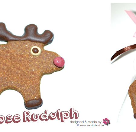 Elbhunde Dresden WauiMiaui Red Nose Rudolph